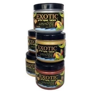 צבע EXOTIC - מטאלי - בקבוק גדול