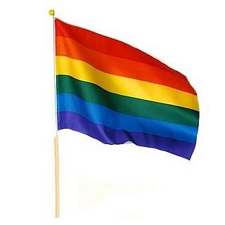 דגל גאווה גדול